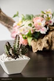 7 best desert flower arrangement images on pinterest desert