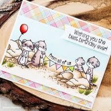 meerkat birthday card set of four 4 graduation cards moose