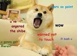 Best Of Doge Meme - deluxe 112 best doge the dog images on pinterest wallpaper site