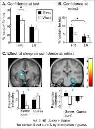 a nap to recap or how reward regulates hippocampal prefrontal