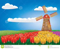 windmill and tulips royalty free stock photo image 30626525