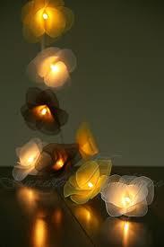String Of Flower Lights by 20 Bumblebee Nylon Rose Flower Led String Fairy Lights White Brown