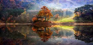 10 perfect reflected landscapes by jaewoon u landscaping