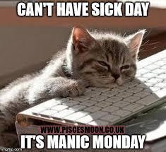 Monday Cat Meme - manic monday sick day imgflip