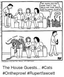 Cartoon Cat Memes - 25 best memes about cat cartoons cat cartoons memes