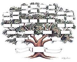 amazon com family tree chart posters u0026 prints