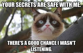 Good Grumpy Cat Meme - my favorite grumpy cat memes jayman s blog