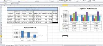 server sales performance report and analysis microsoft excel 2010