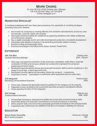 experienced professional resume template 8 online resume template free address example