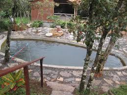 backyard tilapia farming design and ideas of house