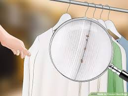 Do Bed Bugs Jump From Person To Person The Best Ways To Prevent Bed Bugs Wikihow