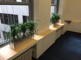 Indoor Window Planter Pdi Plants Blog New Best Discounted Rectangular Planters For Your