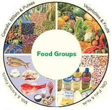 balanced diet u2014 vikaspedia