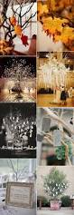10 wishing tree decoration ideas for your wedding day oh