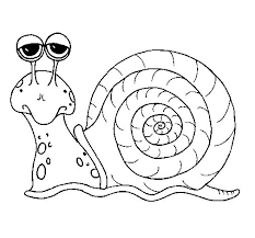 snail 3 coloring coloringcrew