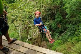 costa rica canopy u0026 zip line tours rainforest canopy tour