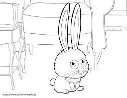 snowball pdf printable coloring page the secret life of pets