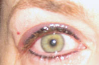eyeliner tattoo pain level permanent eyeliner make up pain level 5 our of 10 a lotta living