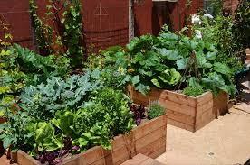 Vegetable Garden Landscaping Ideas Vegetable Garden Designs Garden Planters Kitchen Small