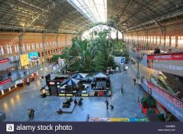 Plants That Grow In Tropical Rainforests Tropical Rainforest Plants Growing In Garden Inside Atocha Railway