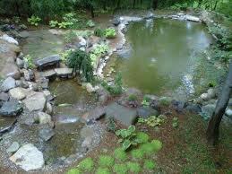 Pictures Of Backyard Ponds by Macomb U0026 Oakland Michigan Mi Backyard Pond Koi Fish Pond Builder