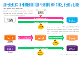 diagram chart production of beer beer making process u2022 googlea4 com