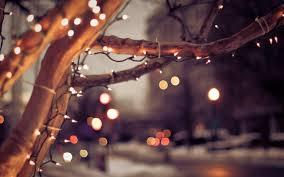 new year city winter tree lights bokeh hd wallpapers