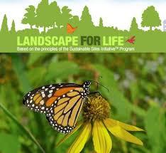 Backyard Series Backyard Series Landscape For Life Class 1 Soil Licking