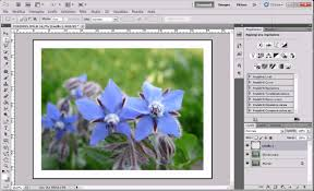 cornici foto gratis italiano tutorial bordi e cornici con photoshop