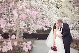 cherry blossom wedding cherry blossom wedding ideas archives happyinvitation