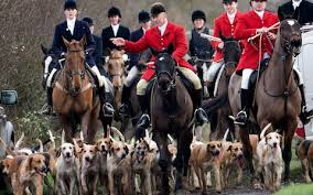fox hunting patron saints and the wren boys there u0027s more to