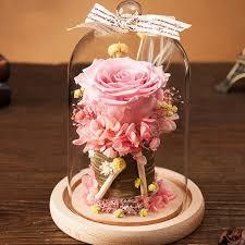 rose in glass preserved rose in glass dome apollobox