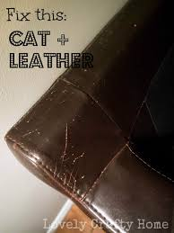 Repair Scratches On Leather Sofa Shoe And An Unhappy