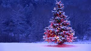a christmas tree gives us a nice warm feeling inside our house
