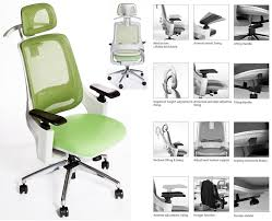 White Ergonomic Office Chair by Ego Premium Class Executive Ergonomic Office Chair In Green