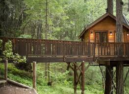 5 incredible treehouses you can actually rent around the world