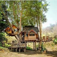 Cool Tree Houses 52 Best Cabin U0026 Tree House Images On Pinterest Tree Houses