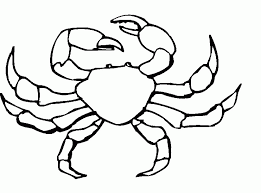 Crab Pictures For Kids 507008 Crab Coloring Page