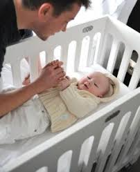 Alma Mini Crib Mini Crib And Bassinet Reviews