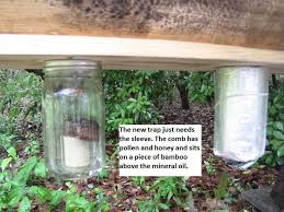 11 best top bar hive tips images on pinterest bee keeping top