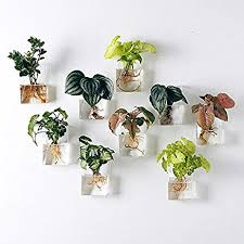 amazon com pack of 2 pieces wall hanging planters glass hanging