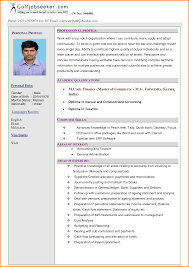 Examples Of Resume Profile Statements by Personal Qualifications Statement Sample