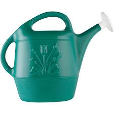 decorative watering cans united solutions green watering can up0008 do it best