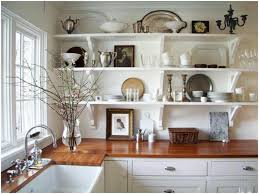 modern makeover and decorations ideas kitchen plant shelf ideas