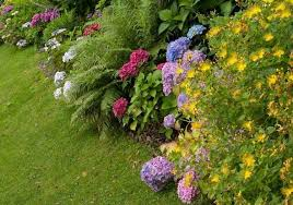 flower bed designs inspiration and guidance for beginners renowaze