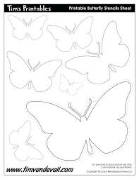 simple outlines butterflies color isolated white butterfly