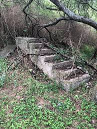 in the woods i found a staircase in the woods mildlyinteresting
