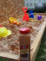 How To Keep Cats Off Outdoor Furniture by Best 25 Sandbox Cinnamon Ideas On Pinterest Sandpit Ideas