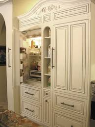 fridge that looks like cabinets love it appliances that know how to blend