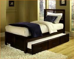 xl twin bed frame with pop up trundle frame decorations